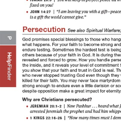 Inset view of the HelpFinder Bible index