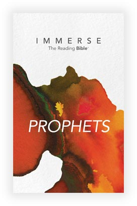 Cover image for the Prophets, Year 2 - Book 2