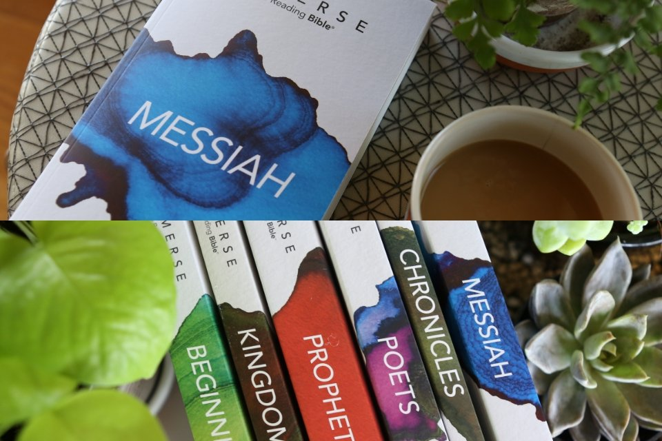 Collage of all of six Immerse Bible volumes