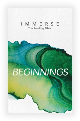 Cover image for the Beginnings, Year 1 - Book 2