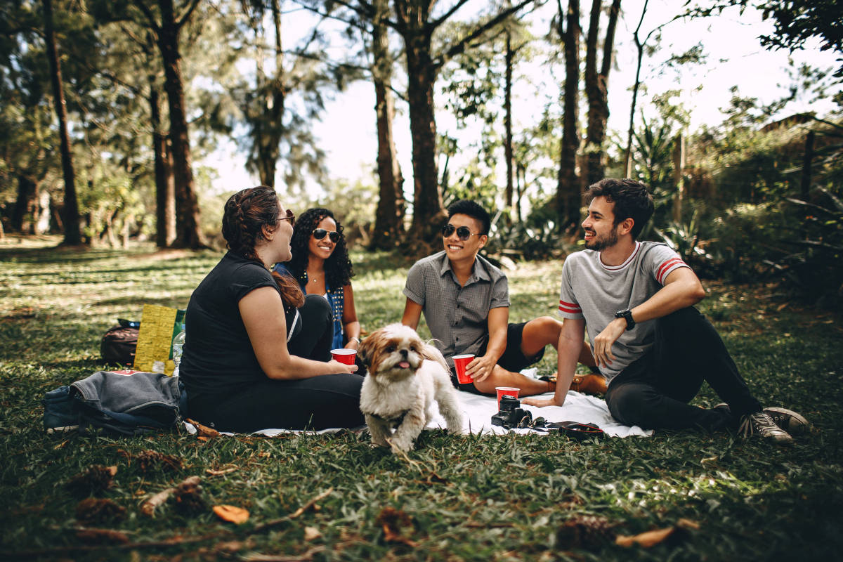 friends sitting outside on the grass in a circle