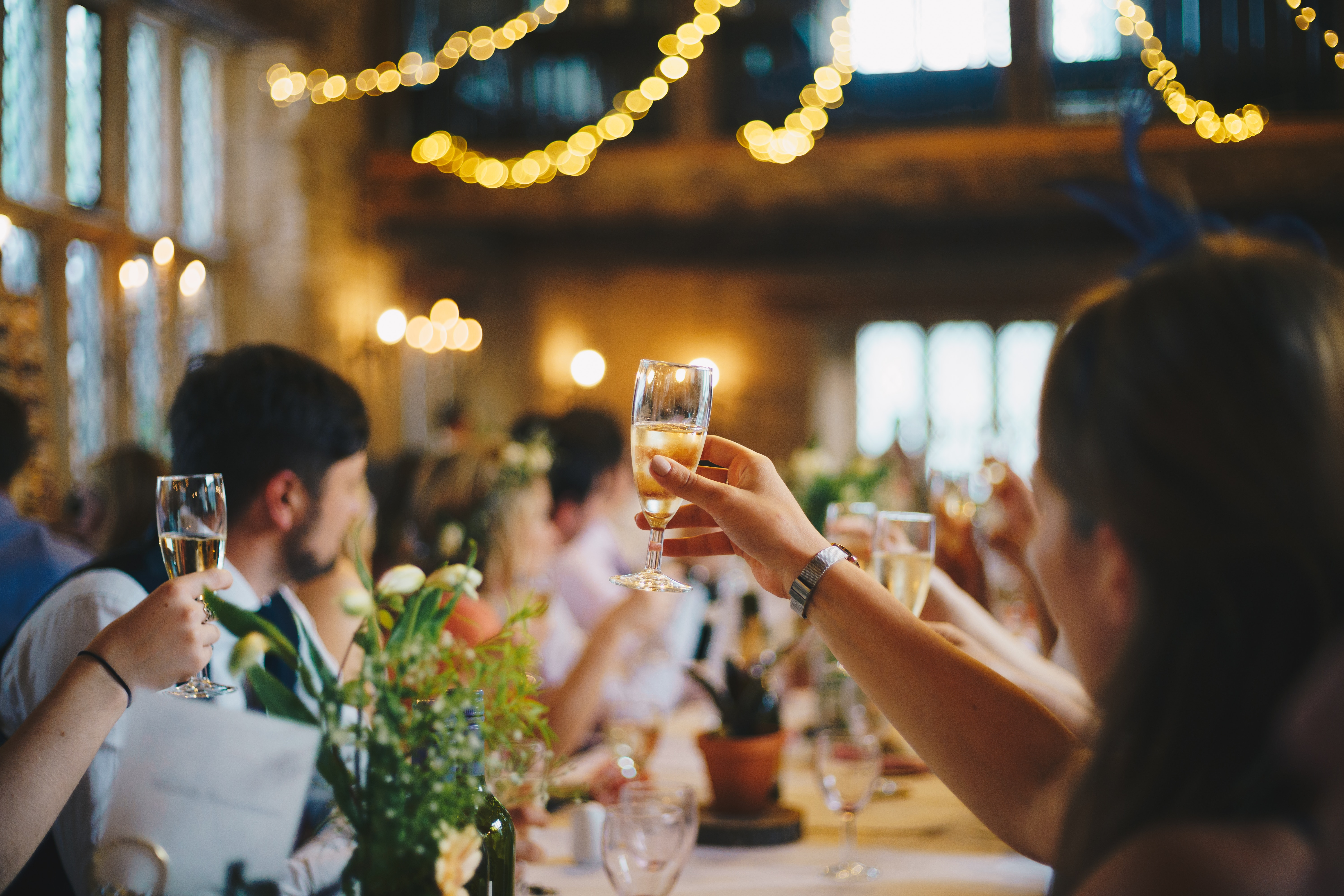 People sitting at a long table raising glasses at a party, warmly lit background