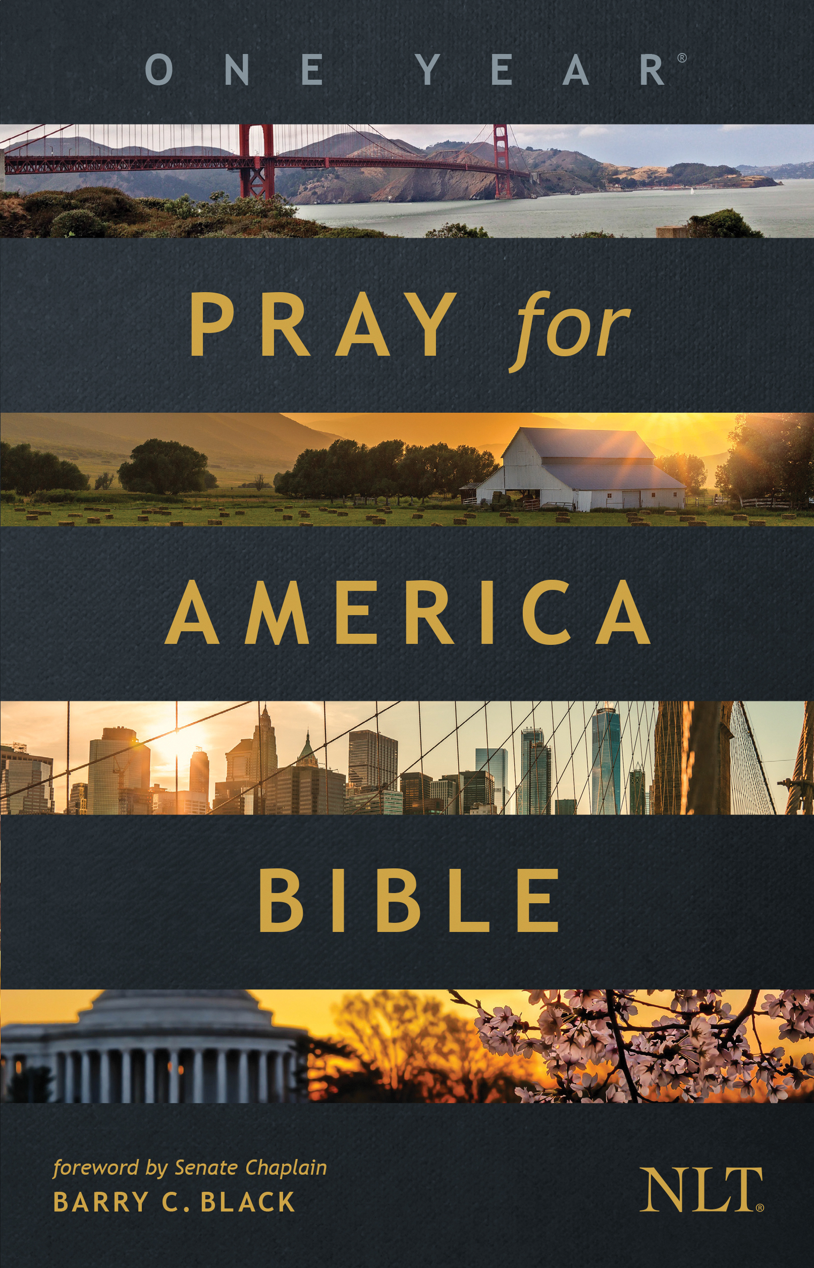 one year pray for america bible nlt cover image