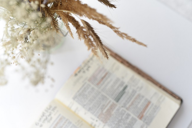A Bible sits open on a white table, out of focus. Just above it is a vase with white flowers and wheat, in focus. How can you abide in Christ? We find out in this blog post!