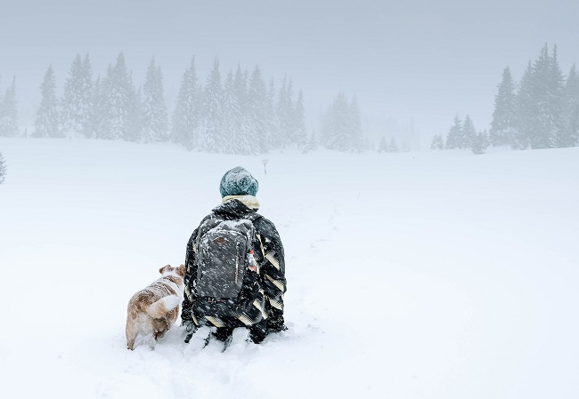A man and his dog kneel in a snowy field as a more snow falls all around them. We see them from behind. Why did God become a man? Let's explore this question in the blog post!