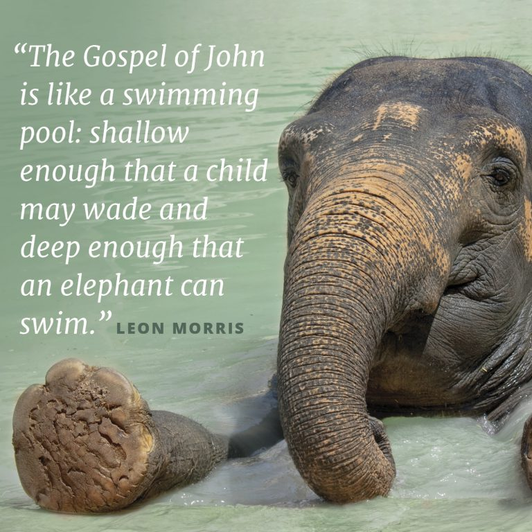 "A picture of an elephant in water accompanies the text that says; ""The Gospel of John is like a swimming pool: shallow enough that a child may wade and deep enough that an elephant can swim."" This quote is from Leon Morris."